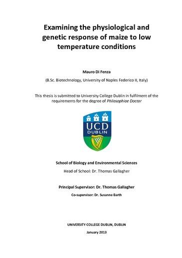 ucd thesis binding guidelines